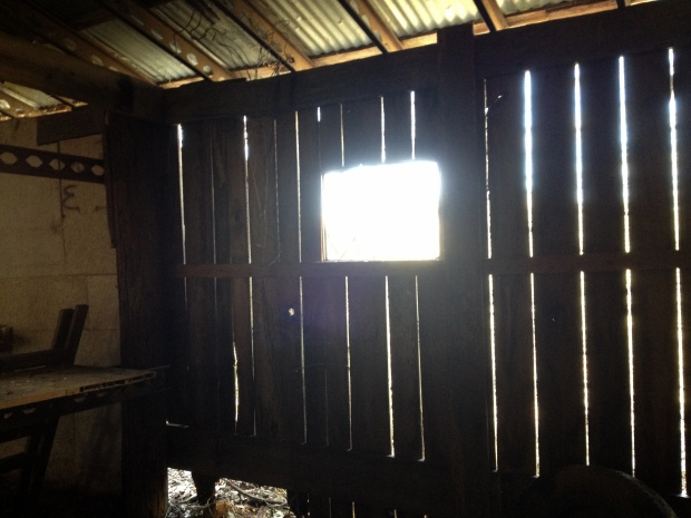 Morning sun while cleaning and organizing the barn
