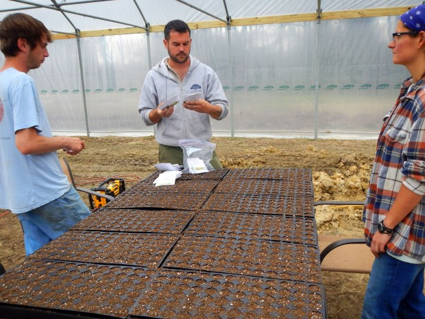 Choosing seeds for a planting party (I chose New Mexico peppers), New Day Farm, Clinton, Louisiana
