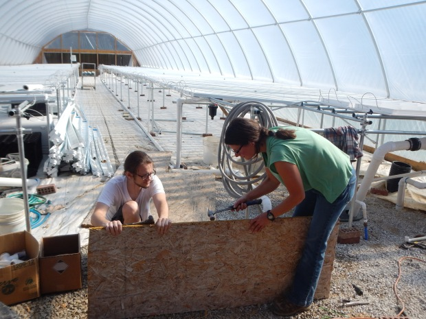 Noah and I pounding nails out of scrap wood at the Power Greens Greenhouse, Tracy City, Tennessee