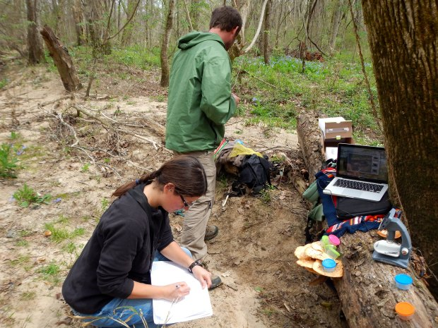Me entering notes during microscope setup, Bluebell Island, Tennessee