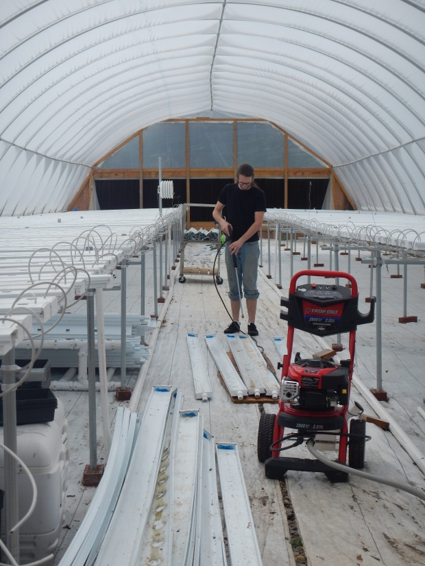 Noah power washing trays, Power Greens Greenhouse, Tracy City, Tennessee