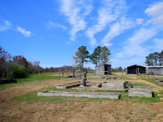 Jonathan raking in raised beds, Grundy County Community Garden, White City, Tennessee