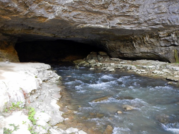 Exterior of the Buggy Top cave entrance, Tennessee