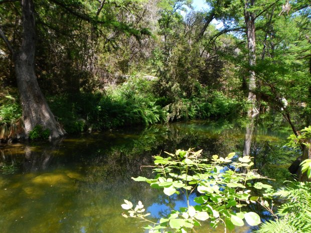 Hamilton's Creek, Hamilton's Pool Preserve, Texas