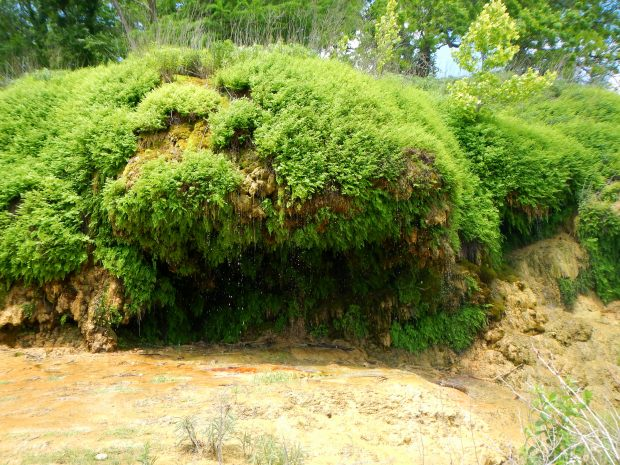 Crockett Gardens Falls/Knight Springs, Goodwater Loop, San Gabriel River Trail, Cedar Breaks Park, Lake Georgetown, Texas