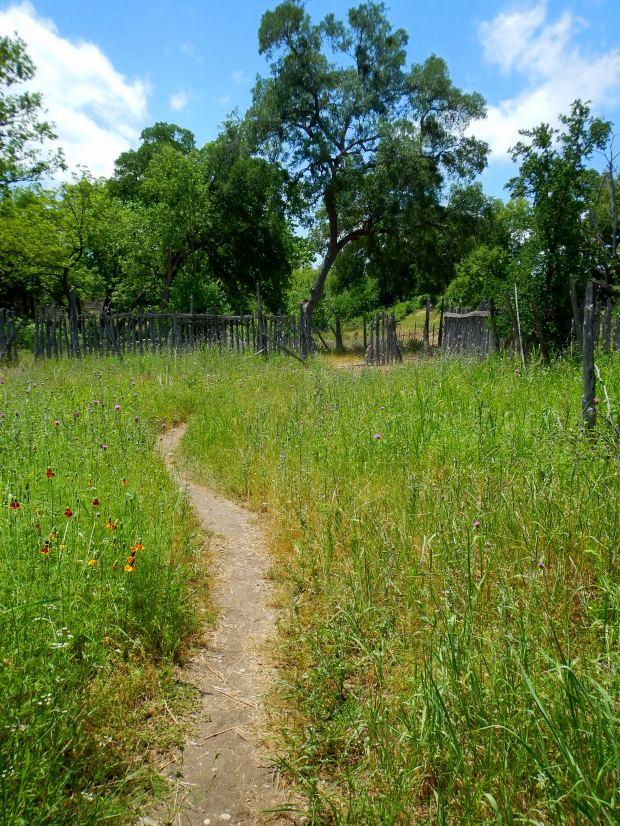 Abandoned farm in Crockett Gardens, Goodwater Loop, San Gabriel River Trail, Cedar Breaks Park, Lake Georgetown, Texas