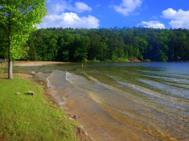Shoreline, DeGray Lake, Arkansas