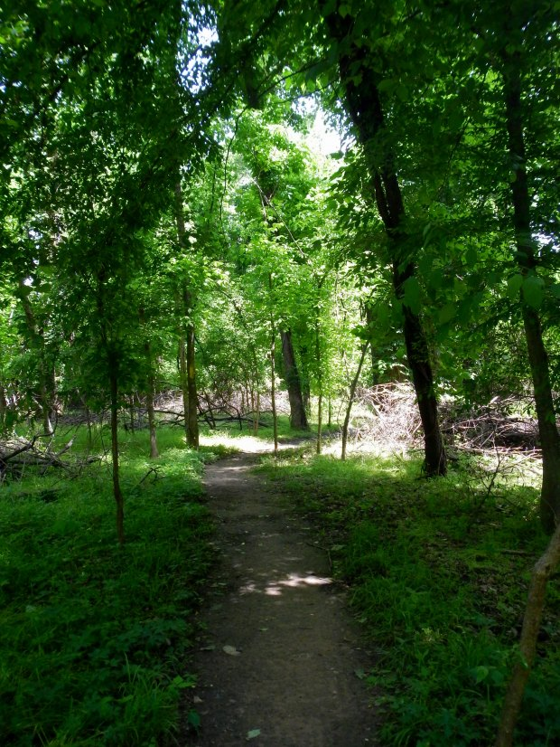 Pfiefer Loop, River Trail, North Little Rock, Arkansas