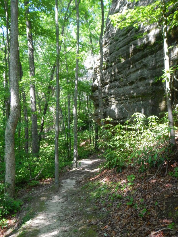 Natural Arch Trail, Big South Fork National Recreation Area, Kentucky