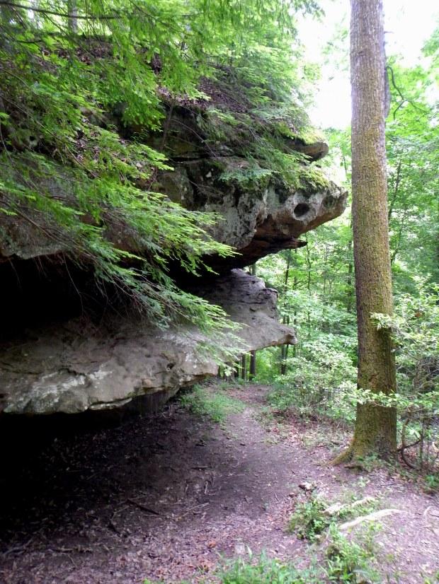 Cumberland Falls Trail, Cumberland Falls State Park, Kentucky