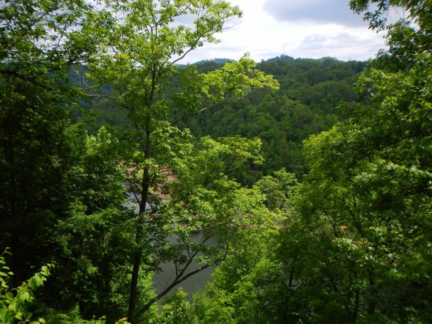 Up on the cliffs, Eagle Falls Trail, Cumberland Falls State Park, Kentucky