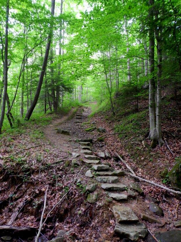 O&W Rail Bridge Trail, Big South Fork Recreation Area, Tennessee
