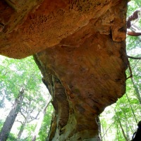 Split Bow Arch, Big South Fork Recreation Area, Kentucky