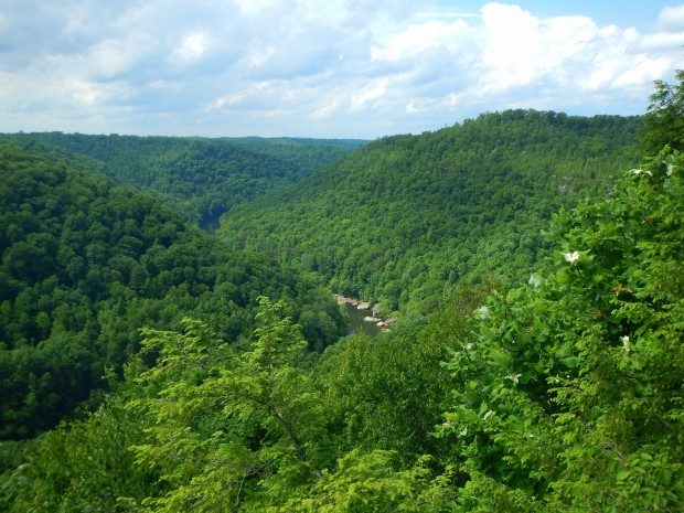 Bear Creek Overlook, Big South Fork Recreation Area, Kentucky