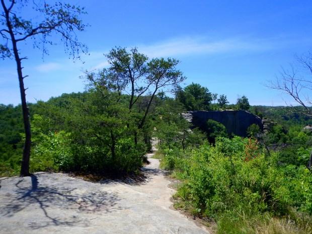 The trail along Auxier Ridge, Daniel Boone National Forest, Kentucky