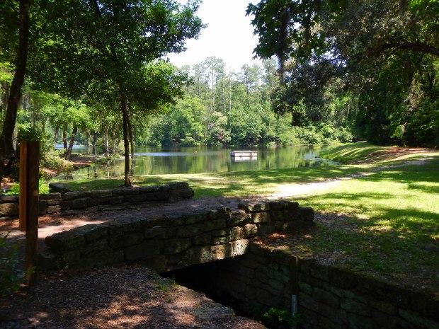 View of Poinsett State Park Lake, Poinsett State Park, South Carolina