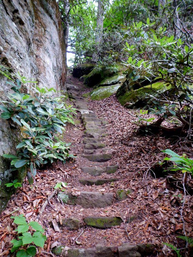 Needles Eye Staircase to the top of Laurel Ridge, Natural Bridge State Park, Kentucky