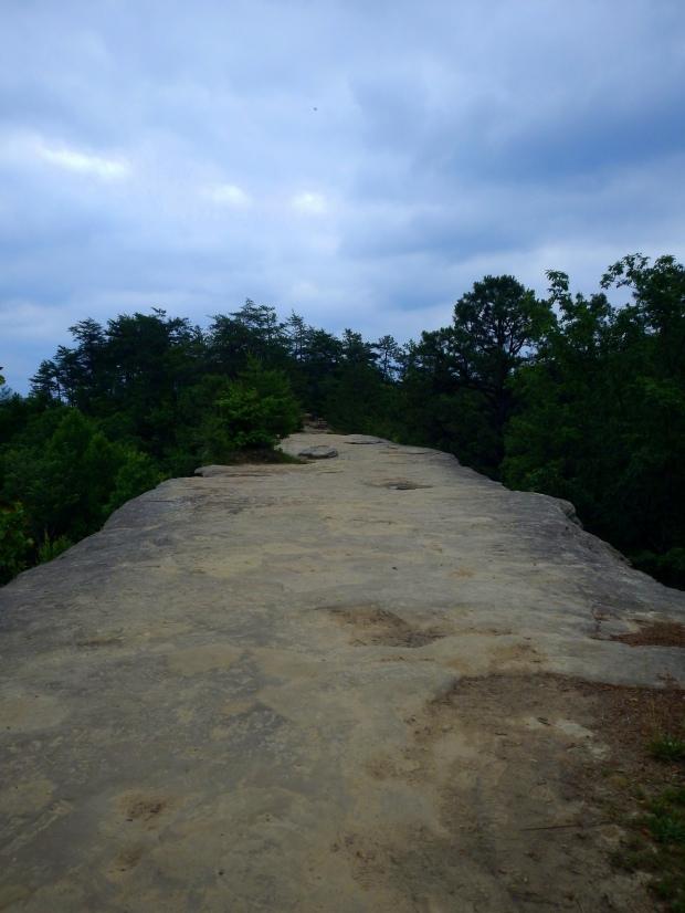Top of Natural Bridge, Laurel Ridge Trail, Natural Bridge State Park, Kentucky