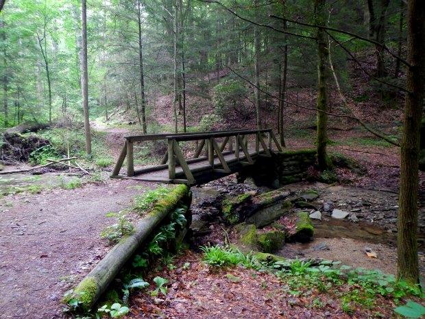 First bridge, Whittleton Branch Trail, Daniel Boone National Forest, Kentucky