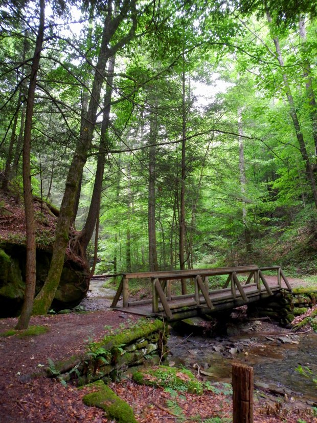 Another view of the first bridge, Whittleton Branch Trail, Daniel Boone National Forest, Kentucky