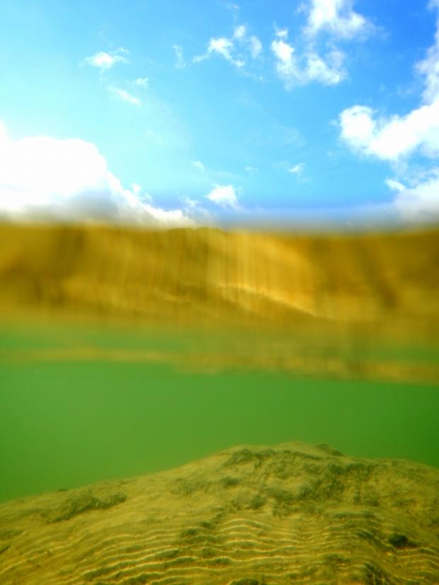 Partially underwater near Shallow Flats, Cave Run Lake, Daniel Boone National Forest, Kentucky