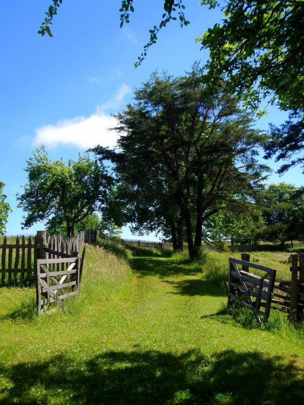 Path to Lige Gibbons' farm, Hensley Settlement, Cumberland Gap National Historical Park, Kentucky