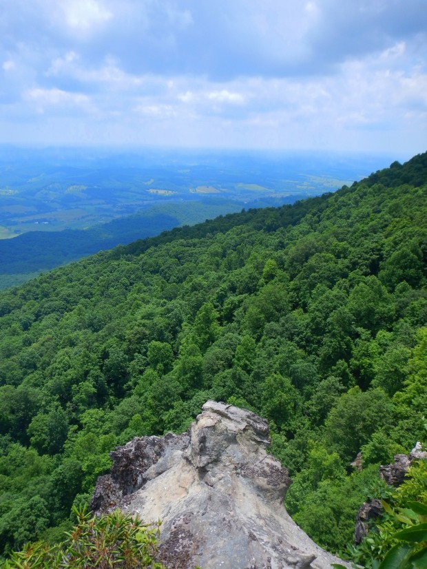 Forest below as seen from White Rocks, Cumberland Gap National Historical Park, Virginia