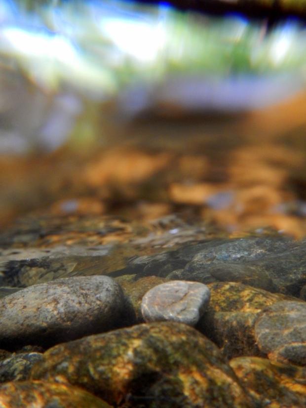 Sunlight dabbling the stones underwater in the Oconaluftee River, Oconaluftee Islands Park, Cherokee, North Carolina
