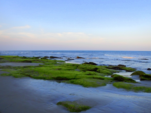 Coquina outcroppings in fading daylight, Kure Beach, North Carolina