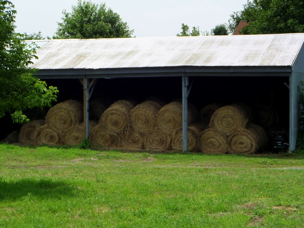Hay, Black Dirt Country, Orange County, New York