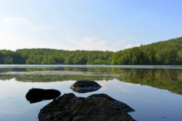 Rocks, Monksville Reservoir, New Jersey (Photo by Tina)