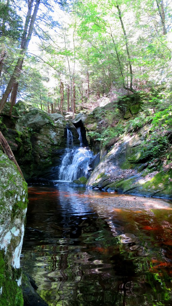 Enders State Forest, Connecticut