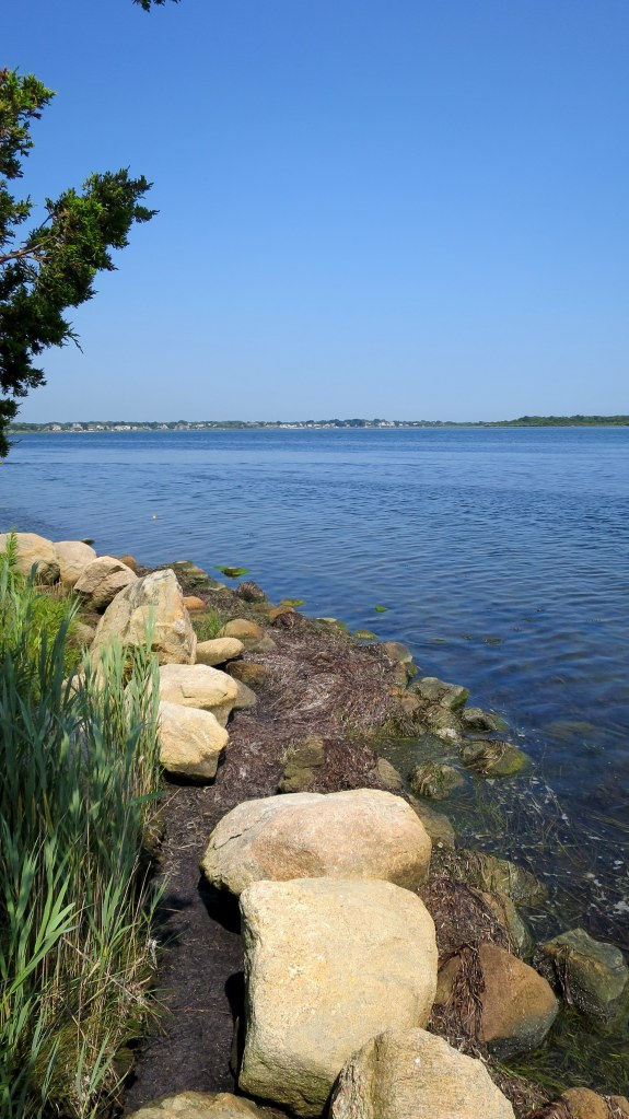 Looking out onto Ninigret Pond, Ninigret Wildlife Refuge, Charlestown, Rhode Island