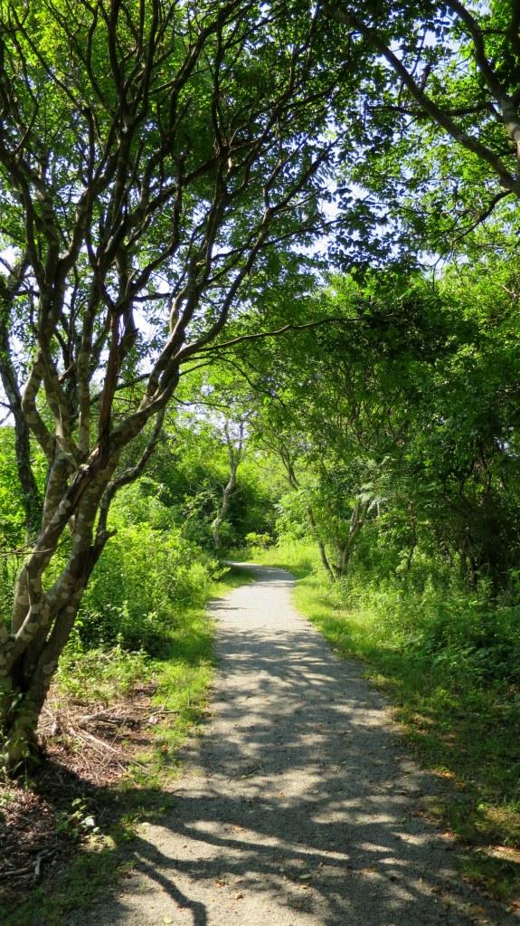 Cross Refuge Trail, Ninigret Wildlife Refuge, Charlestown, Rhode Island