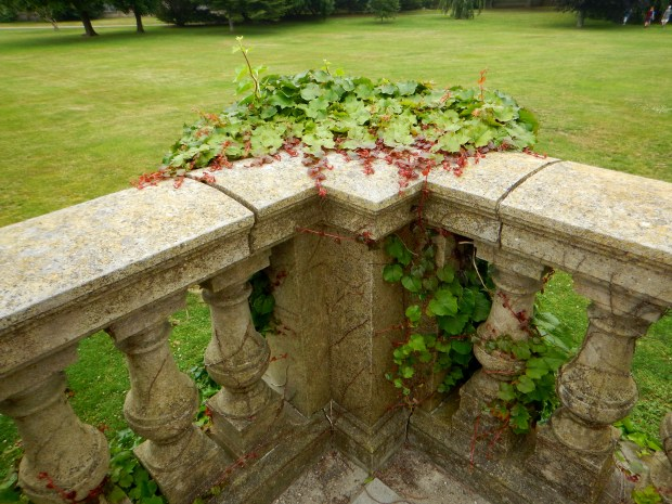 Ivy growing on the railing, The Breakers, Newport, Rhode Island