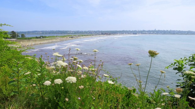 View of Easton Beach from Cliff Walk, Newport, Rhode Island