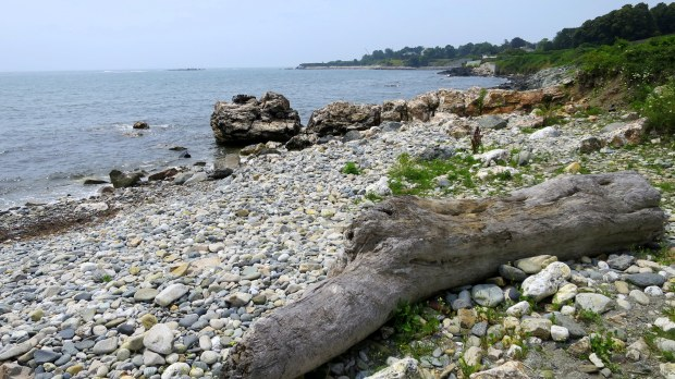 Rocky beach on Cliff Walk, Newport, Rhode Island