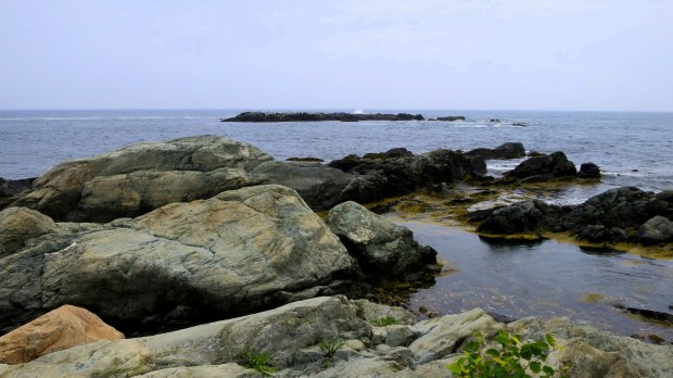 Rocks, Cliff Walk, Newport, Rhode Island