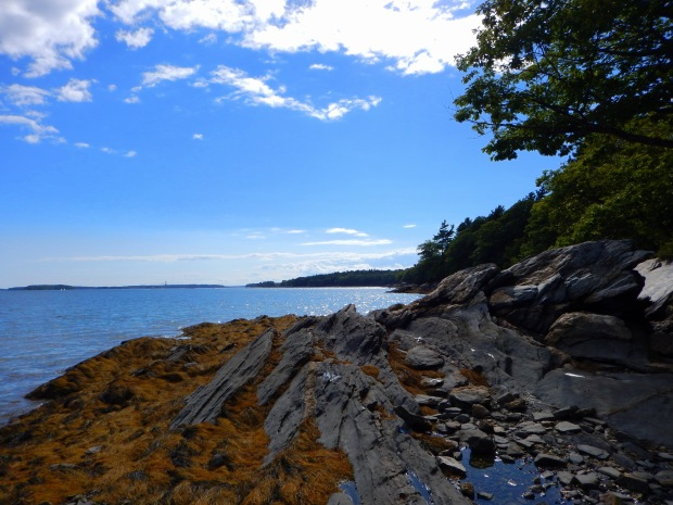 Wolfe's Neck State Park, Maine