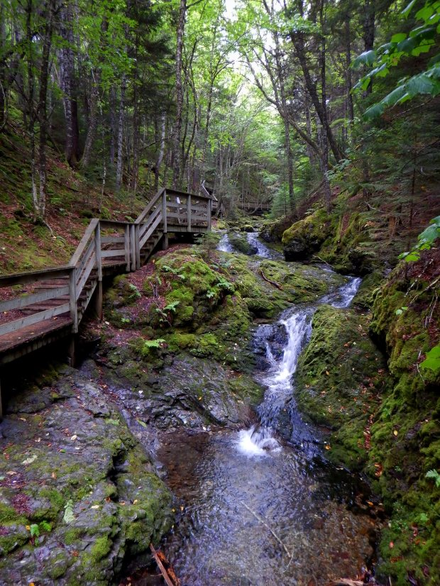 Dickinson Falls Trail, Fundy National Park, New Brunswick, Canada