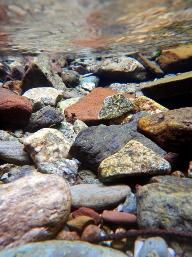Granites and quartz underwater, Dickinson Falls  Trail, Fundy National Park, New Brunswick, Canada