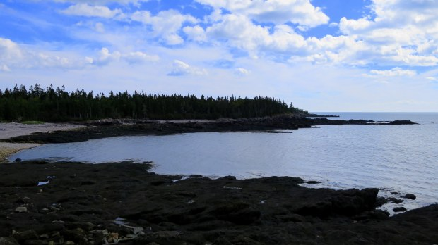 Nature Trail, New River Beach Provincial Park, New Brunswick, Canada