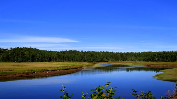 View from near Tynemouth Creek Covered Bridge, Tynemouth Creek, New Brunswick, Canada