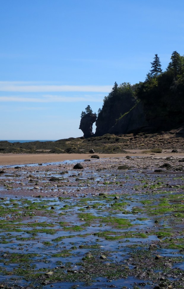 Sea stack, West Quaco, New Brunswick, Canada