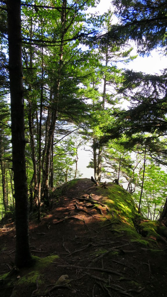 Coastal Trail, Fundy National Park, New Brunswick, Canada