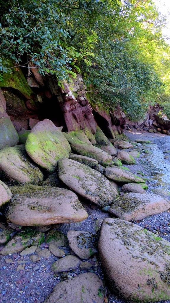Wave-beaten sandstone, Herring Cove Beach, Coastal Trail, Fundy National Park, New Brunswick, Canada