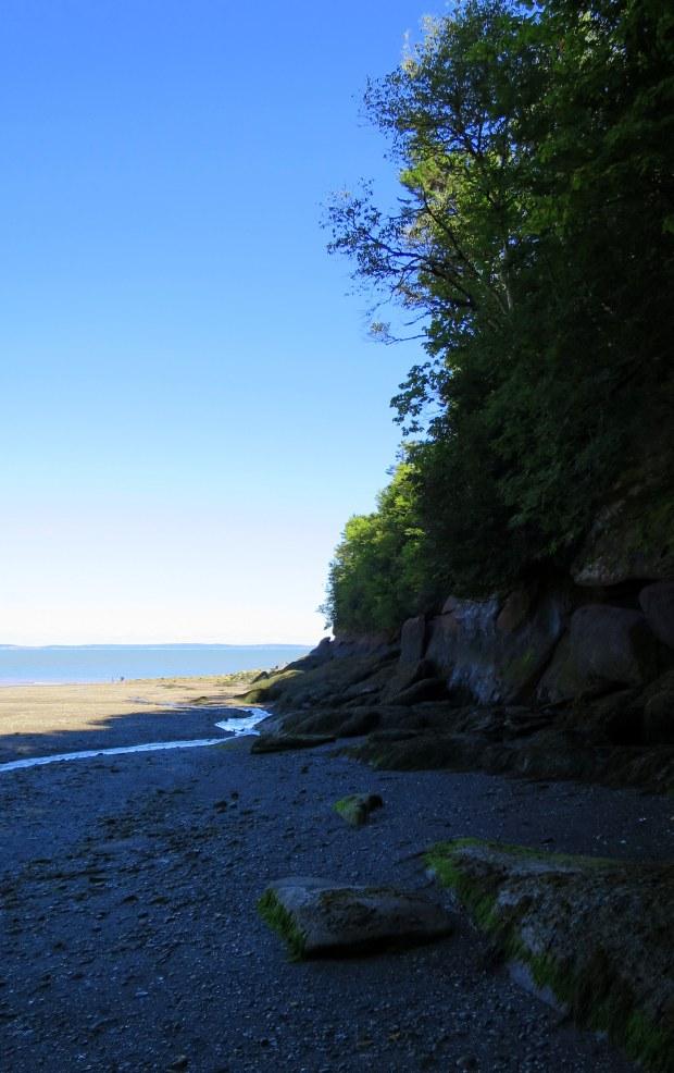 Herring Cove Beach near low tide, Coastal Trail, Fundy National Park, New Brunswick, Canada