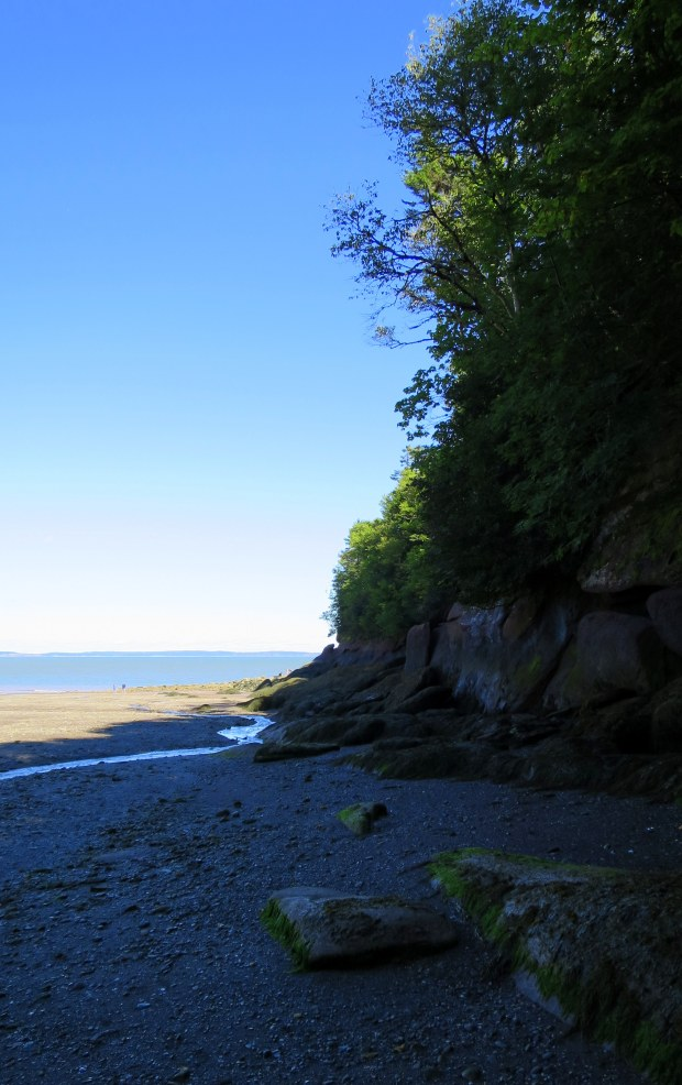 Herring Cove Beach near low tide, Coastal Trail, Fundy National Park, New Brunswick, Canada