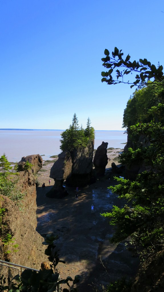 Looking down on the sea stacks, Hopewell Rocks, New Brunswick, Canada