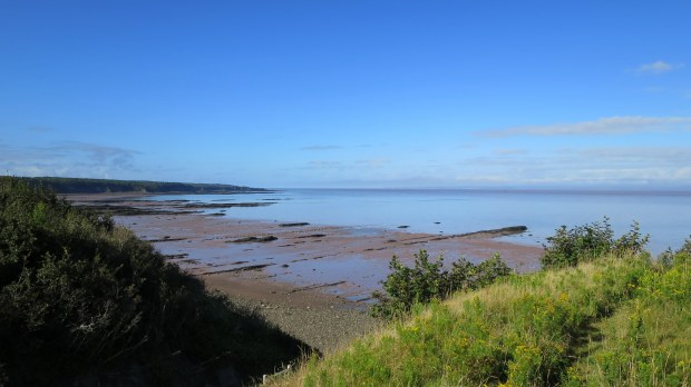 Joggins Fossil Cliffs around mid-tide, Nova Scotia, Canada